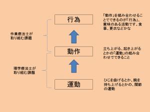 PT,OT説明の図